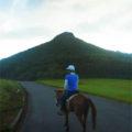 グスクへあがる(馬体験) 2