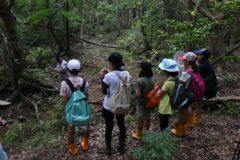 ラムサールの森散策