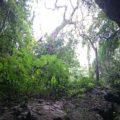 神秘の鍾乳洞「ヤジヤーガマ」探検 3