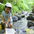 水と緑の自然教室 2