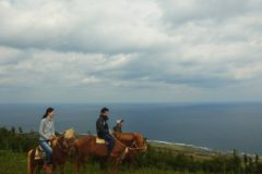 「天空をめざす」(馬体験)