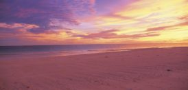 【体験】ハテの浜サンセットツアー