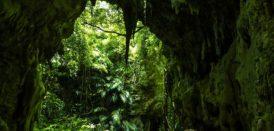 【体験】神秘の洞窟★ヤジヤーガマ探検