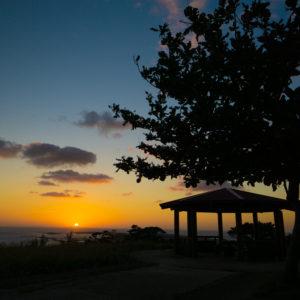 ティーダ橋の東屋と朝日とモモタマナの木
